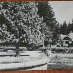 carte postala RPR BORSEC  - VEDERE DIN PARC, CIRCULATA 1957