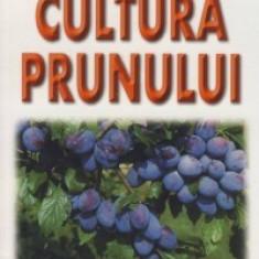 Lenuta Chira, D. Hoza - Cultura prunului
