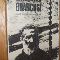 OMAGIUL LUI BRANCUSI -- 1976, 250 p. - Carte sculptura