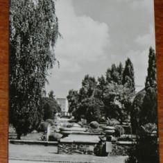 Carte postala RPR JUDETUL SATU MARE - VEDERE DIN PARC - NECIRCULATA - Carte Postala Transilvania dupa 1918