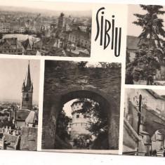 Carte postala- SIBIU - colaj - Carte Postala Transilvania dupa 1918