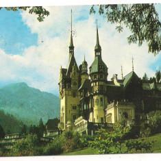 Carte postala-SINAIA - Muzeul Peles - Carte Postala Muntenia dupa 1918