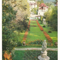 Carte postala(ilustrata)-GOVORA-vedere