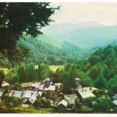 Carte postala(ilustratata)-Manastirea Suzana