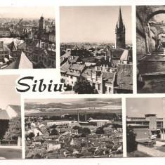 Carte postala(ilustrata)-SIBIU-colaj - Carte Postala Transilvania dupa 1918