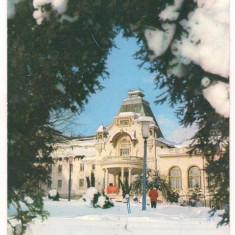 Carte postala(ilustrata)-SINAIA Casa de cultura - Carte Postala Muntenia dupa 1918, Circulata