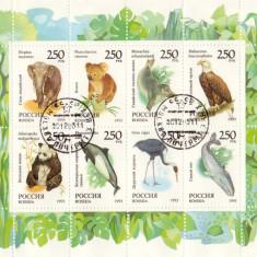 BLOC TIMBRE RUSIA ANIMALE 1993 - Timbre straine
