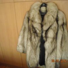 Haina blana vulpe argintie - haina de blana