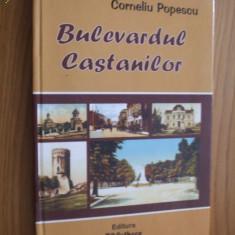 BULEVARDUL CASTANILOR  - Corneliu Popescu   --  [ 2005, 239 p. ]