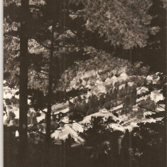 CPI (B624) BAILE HERCULANE, VEDERE DE LA BAILE HERCULANE, EDITURA MERIDIANE, CPCS, CIRCULATA, 1963, STAMPILE, TIMBRU FILATELIC, Fotografie