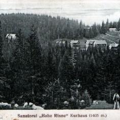 Păltiniş ~1930