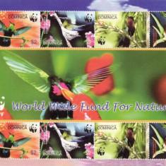 BLOC TIMBRE PASARI  DOMINICA  WWF