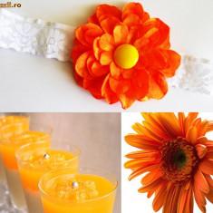 Bentita de par pentru fetite Orange Angel