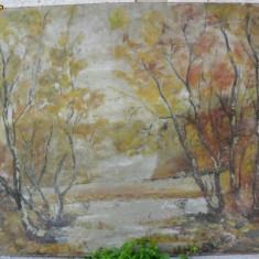 Padure - 4 , pictura veche in Ulei pe carton de dimensiunile 90 x 67 cm