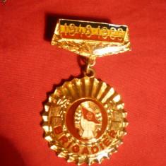Insigna - 35 Ani  UTC - Brigadier