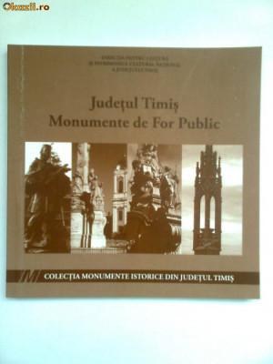 BANAT-MONUMENTE DE FOR PUBLIC DIN TIMIS, REPERTORIU, TIMISOARA, 2010 foto