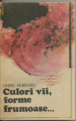 Culori vii, forme frumoase de Ovidiu Hurduzeu foto