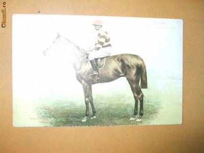 Carte postala echitatie cal animale Anglia jocheu Derby winner 1905 Cicero foto