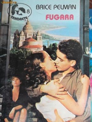 TANDRETE-8-FUGARA foto