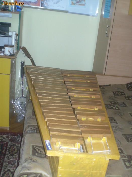 Marimbafon foto mare