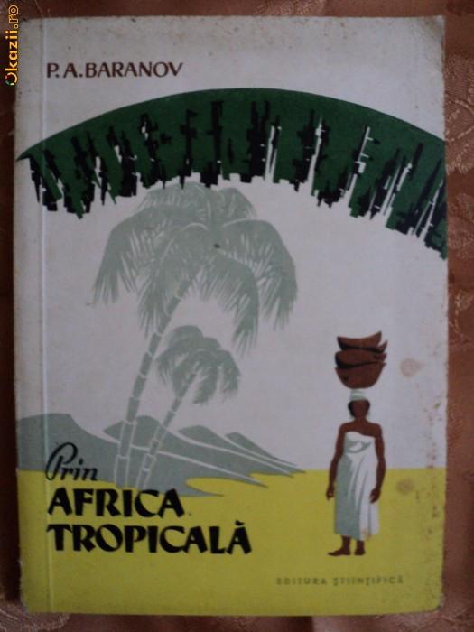 PRIN AFRICA TROPICALA - P. A. BARANOV foto mare