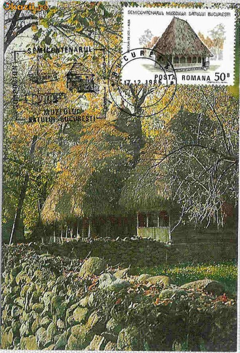 Ilustrata Maxima Folclor - Casa Salciua de Jos