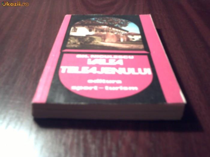 Valea Teleajenului - Gh. Niculescu - 1981
