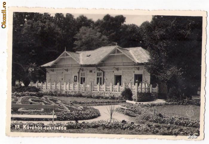 Baile Felix - Cafeneaua, ilustrata circulata 1942 foto mare