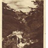 Bnk cp baile herculane vedere generala dela chioscul cucu 1950 - Carti Postale Romania dupa 1918