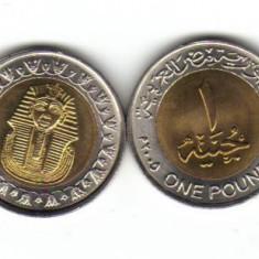 Bnk mnd egipt 1 pound 2005 unc, bimetal