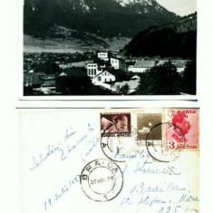 CP105-28 -Zarnesti -Fotoblitz Zarnesti -antebelica -circulat1937