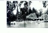 CP71-11- Ramnicu Valcea, Parcul Zavoi (circulata 1967)