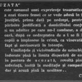 Michel de saint pierre - acuzata - Roman, Anul publicarii: 1991