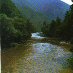 Bnk cp muntii apuseni - valea ariesului