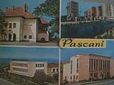 PASCANI 4 IMAGINI DIN 1979