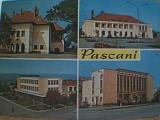PASCANI 4 IMAGINI DIN 1974