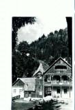 CP73-37- Vedere din Valea Vinului (circulata 1966)