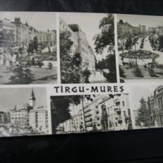 Targu Mures - Mozaic 2