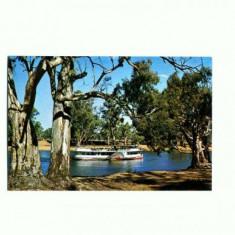 CP132-43 Paddle Steamer on Murray River-Australia -necirculata