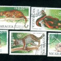 NICARAGUA - SERIE TIMBRE ANIMALE - B 6 - Timbre straine