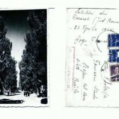 CP122-95 Caracal -Vedere din Parc -circulata 1945 -cenzurata