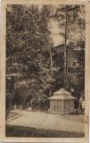 2439 Slanic Moldova Izvorul 3 circulat slanic-hotin 1934