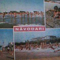 NAVODARI DIN 1979