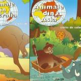 Set carti de colorat-Animale din Asia, Animale din Australia - Carte de colorat