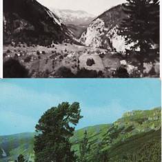 Platoul Zarnesti , Muntii Bucegi -2 vederi