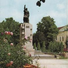 Bistrita - Statuia lui Andrei Muresanu