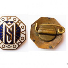 INSIGNA NCPPBVM Ordinul Bisericii Romano-Catolice Cons. Național La Salette **