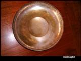 Fructiera alama argintata, Fructiere
