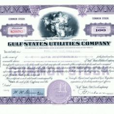 124 Certificat actiuni SUA -perforat-pentru colectionari+fiscale