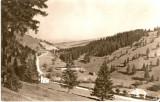 R2413 Muntii Ciucului Valea Ciucului circulat 1968